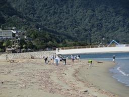 海岸沿いを掃除